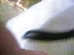 মেয়েদের হস্তমৈথুন মেয়ে হিজড়া বাংলাদেশী নায়িকাদের সেক্স ভিডিও উভমুখি যৌনতার মাই এর